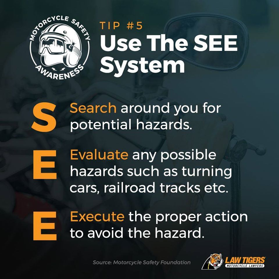 law tigers Search Evaluate Execute
